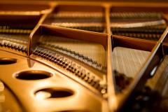 2018_05_20_Pianocity_Yamaha_183205_5D4A1716