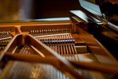2018_05_20_Pianocity_Yamaha_183212_5D4A1719