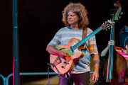 2018_07_25-Pat-Metheny-214307-5D4A2091