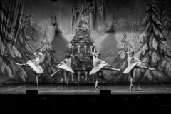 2019_03_01-Schiaccianoci-Kiev-©-Luca-Vantusso-213843-EOSR1043