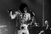2020_01_14-we4show-Elvis-©-Luca-Vantusso-213419-EOSR2797