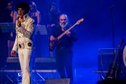 2020_01_14-we4show-Elvis-©-Luca-Vantusso-214143-GFXS2258