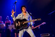 2020_01_14-we4show-Elvis-©-Luca-Vantusso-222634-GFXS2379