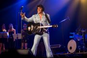 2020_01_14-we4show-Elvis-©-Luca-Vantusso-222638-GFXS2383