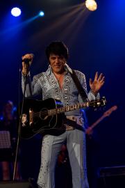 2020_01_14-we4show-Elvis-©-Luca-Vantusso-222640-GFXS2384