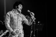 2020_01_14-we4show-Elvis-©-Luca-Vantusso-224100-GFXS2418