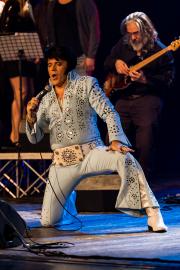 2020_01_14-we4show-Elvis-©-Luca-Vantusso-224349-GFXS2451