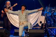 2020_01_14-we4show-Elvis-©-Luca-Vantusso-232432-GFXS2583