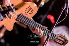 Pino_Daniele_Band_221822_7D2_1791