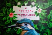 2019_06_08-Pedralbes-OP-©-Luca-Vantusso-151704-5D4B7283