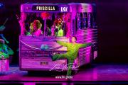 2020_01_29-Priscilla-©-Luca-Vantusso-232639-EOSR5131